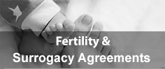Surrogacy Agreements